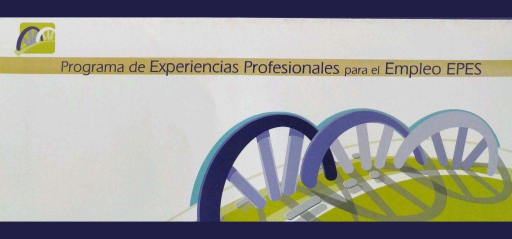 Experiencias Profesionales para el Empleo (EPES)- Ayuntamiento de Jerez de la Frontera